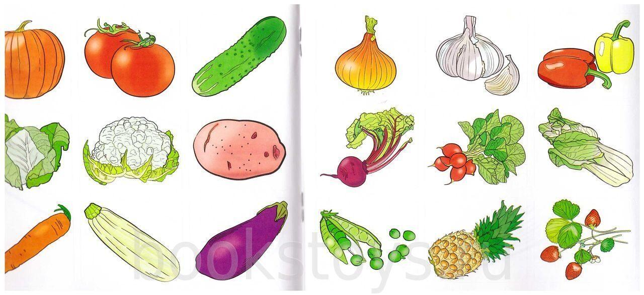 МААМКартинки иллюстрации раскраски дидактические и